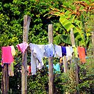 Laundry in the middle of the road by Esperanza Gallego