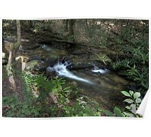Sea Creek Falls Creek Bed - White County, GA  Poster