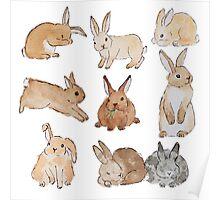 Watercolour Rabbits Poster