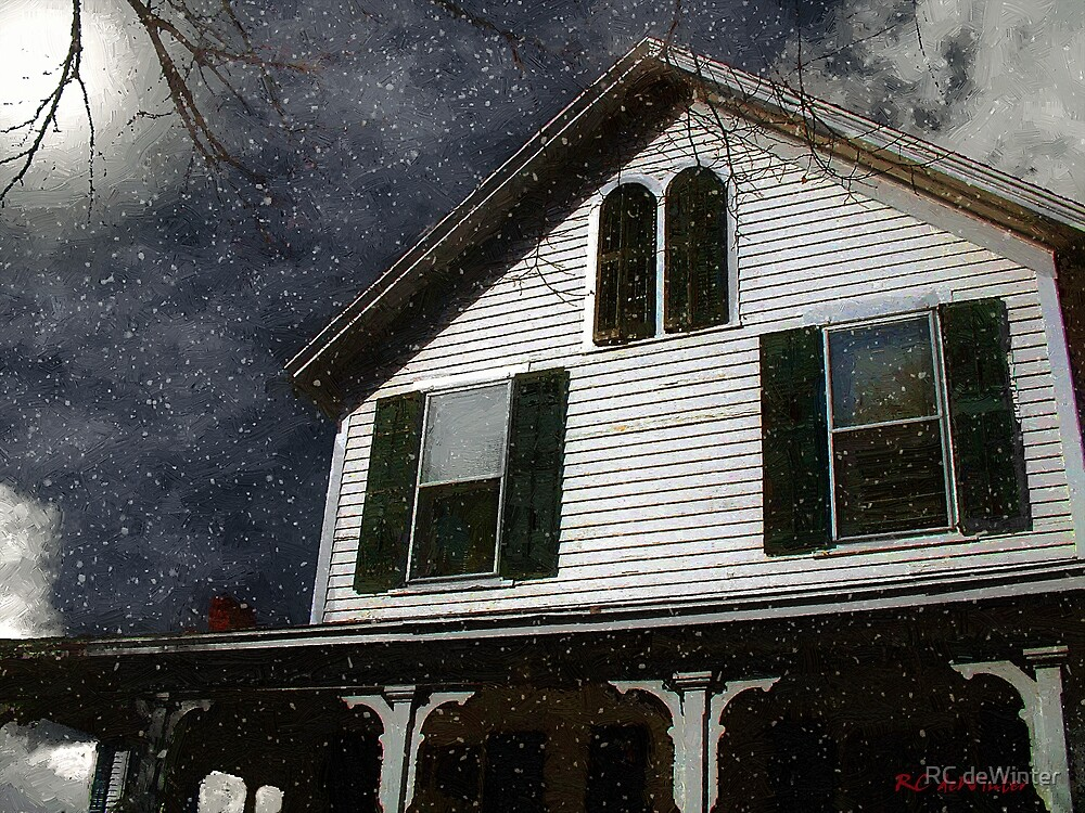 Snowstorm In from the Sound by RC deWinter