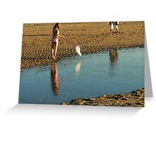 the net the fish the sun Greeting Card