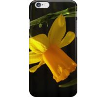Just Another Stereotypical Daffodil Shot iPhone Case/Skin