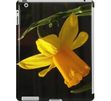 Just Another Stereotypical Daffodil Shot iPad Case/Skin