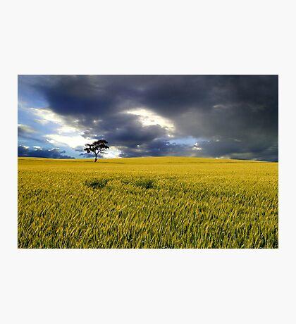 Stormy Australian Rural Landscape Photographic Print