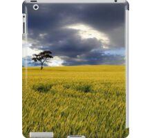 Stormy Australian Rural Landscape iPad Case/Skin