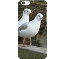 Tweedledum And Tweedledee iPhone Case/Skin