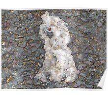 Paper Marche Poodle Poster