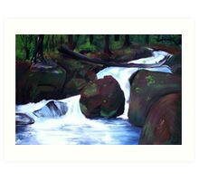 Tranquil Forest Stream Art Print