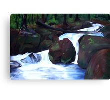 Tranquil Forest Stream Canvas Print