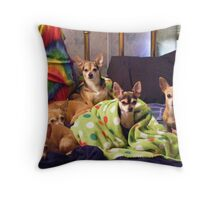 Resting Chihuahuas Throw Pillow