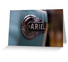 Ariel  Greeting Card