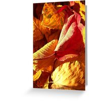 warm is the color of my heart... Greeting Card