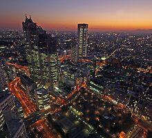 Shinjuku Sunset by berndt2