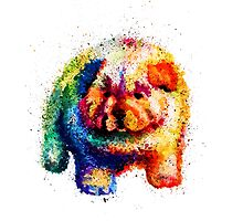 Cute Rainbow Colored Puppy by AndreeaRED