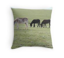 Three Burros Throw Pillow