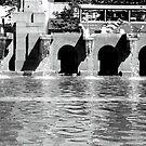 Fountain, Boston by MaggieGrace
