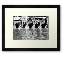 Fountain, Boston Framed Print