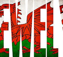 Welsh Name T shirts / Enw Gymraeg - Llewelyn T Shirts, Stickers and Other Gifts by zandosfactry