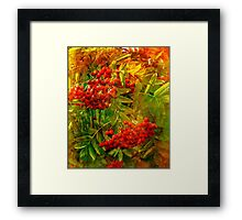 The Rowan Framed Print