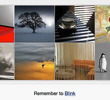 Mornings Can Be Like That: 20 August 2010 by The RedBubble Homepage