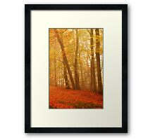 Russet and Gold Framed Print