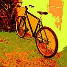 A Great Day For A Bike Ride by Candy Anne Anguiano