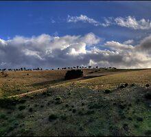 Normanville South Australia. by sedge808