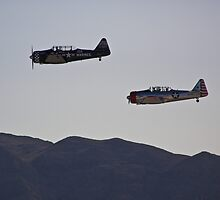 T-28 Trojans flyby by Henry Plumley