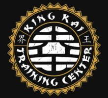Training center Baby Tee