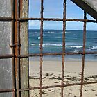 Sea Through Fence by SuziTC