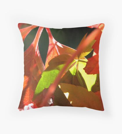 Boston Ivy Autumn - Daylesford Victoria Throw Pillow