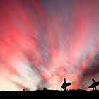 Perfect end to a day - Mona Vale by Alex Marks