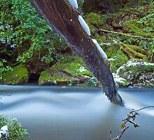 Hidden Falls Creek Velvet Blue by tinnieopener