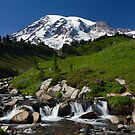 Mount Rainier by Olga Zvereva