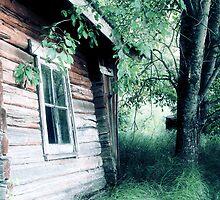 19.8.2010: Sauna by Petri Volanen