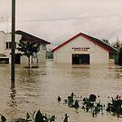 Bateys-1991 Flood-Rockhampton QLD Australia by Gryphonn