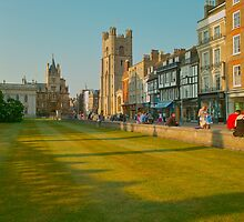 Cambridge, Late Spring 16 by Priscilla Turner