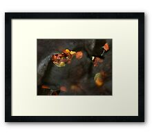 river in autumn II Framed Print