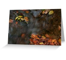 river in autumn III Greeting Card
