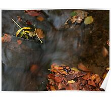 river in autumn III Poster