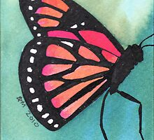 Butterfly on green by anissa147