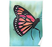 Butterfly on green Poster