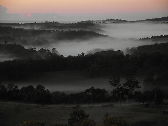 """""""First Light"""" by debsphotos"""