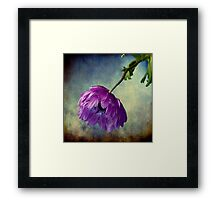 Melancholy Memories Framed Print