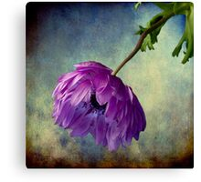 Melancholy Memories Canvas Print