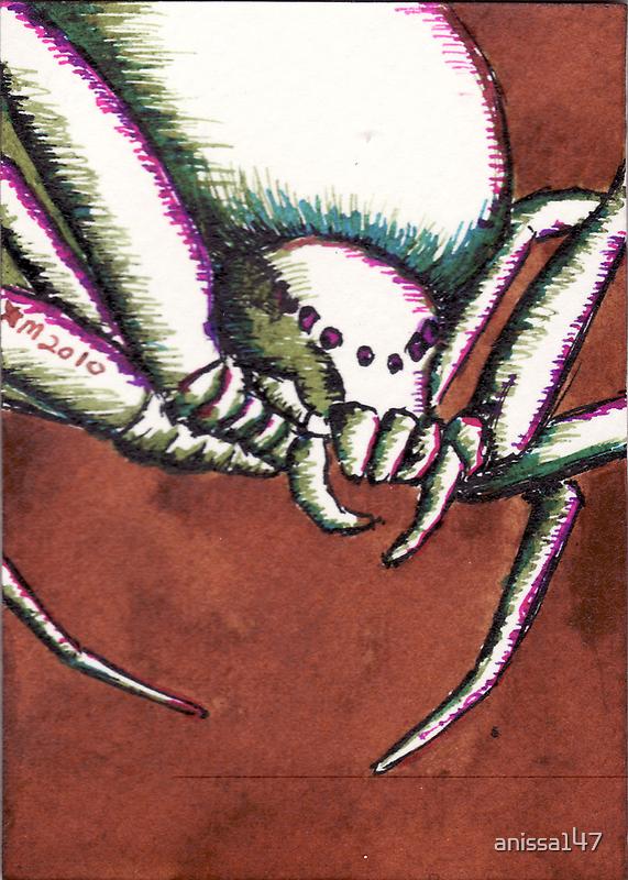 Creepy Spider by anissa147