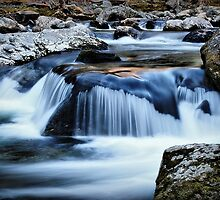 The Pigeon River by Christine Annas