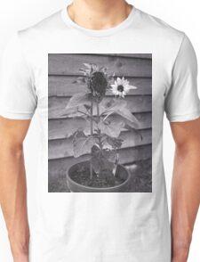 Old & New Sunflower Unisex T-Shirt