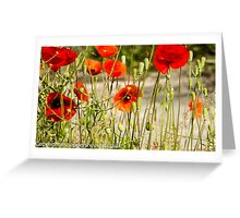 Wild poppies from the meadow flowers bywhacky  Greeting Card