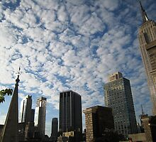New York City Skyline by chipster